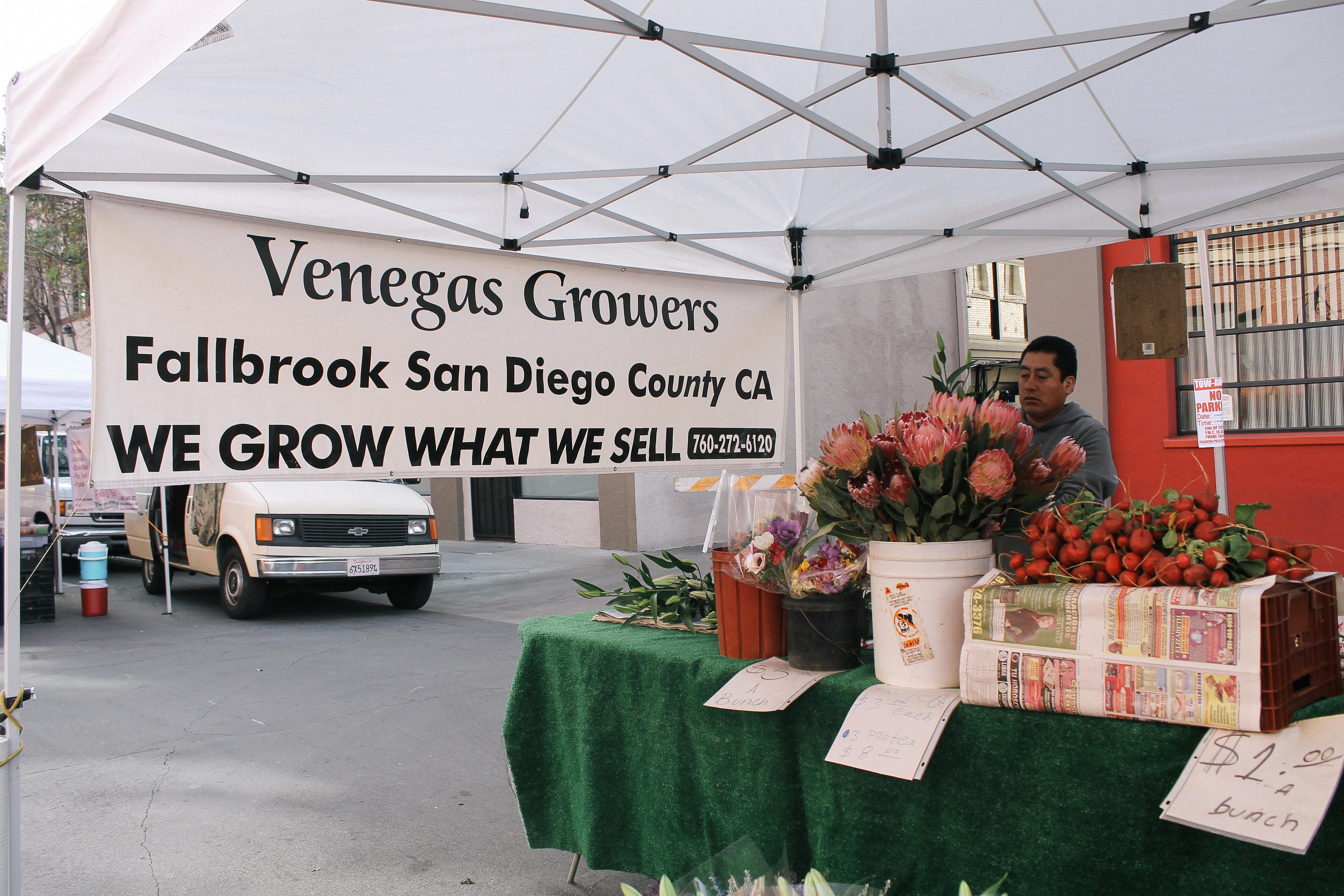 fresh flowers from Venegas Growers