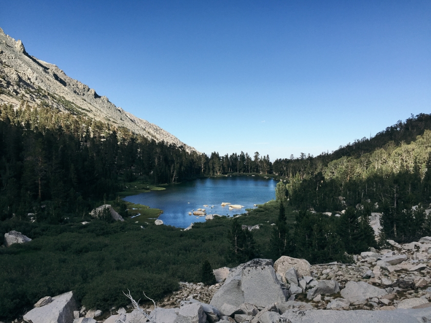 Inyo National Forest in California