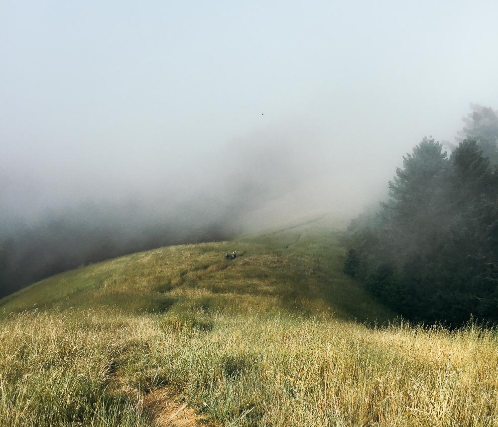 Mt. Tamapais in Northern California