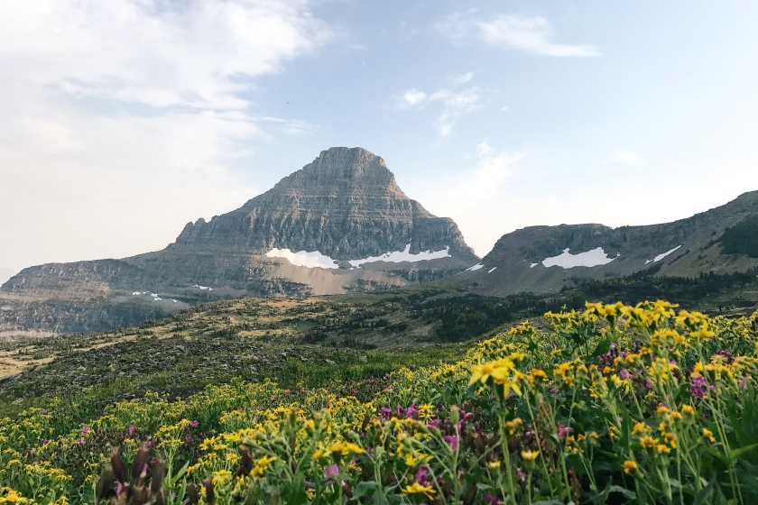 Logan Pass in Glacier National Park