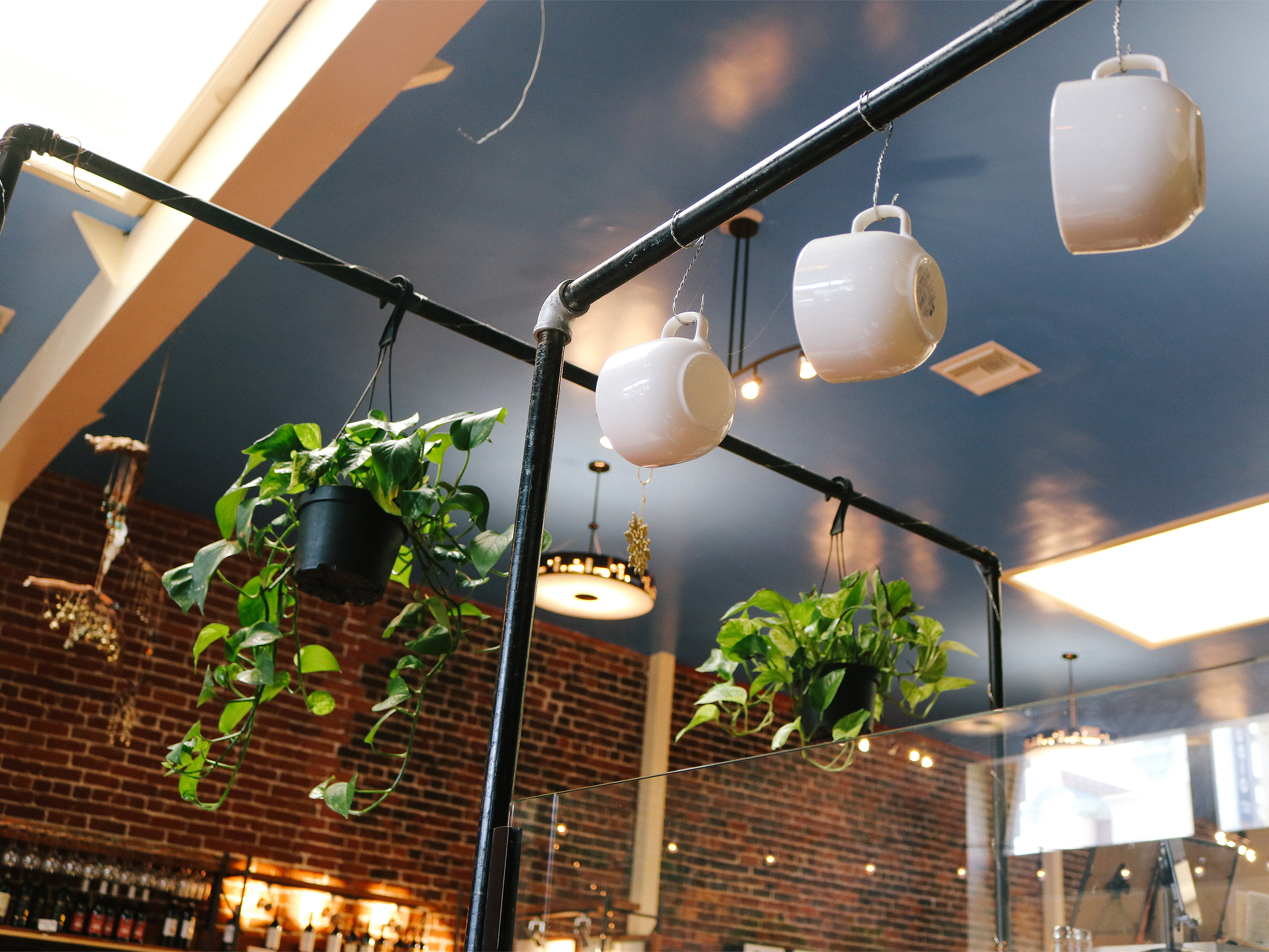 coffee mugs and plants hanging out