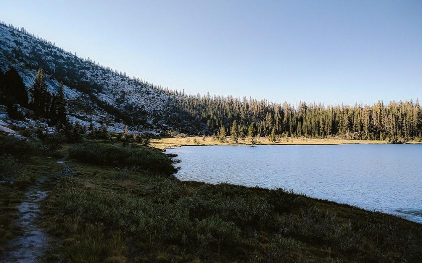 Tinycaravan: On Environmental Optimism